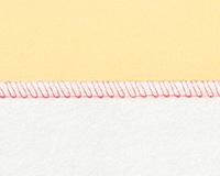 2本糸縁かがり